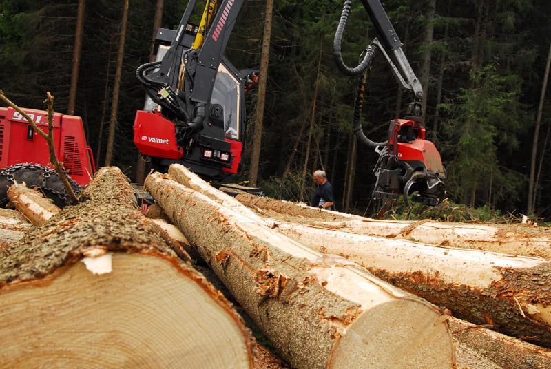 Gjennomsnittslikning på skog – kun for ENK fra 2015