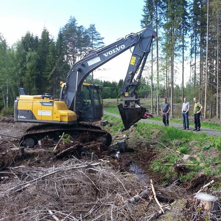 Revidert skjema for utbetaling av skogfond
