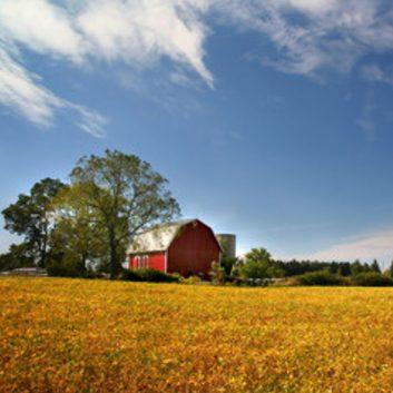 Endringer i landbrukslovgivningen