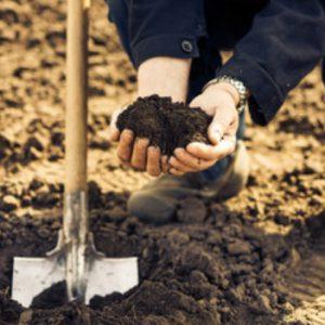 omsetning av landbrukseiendom skatt