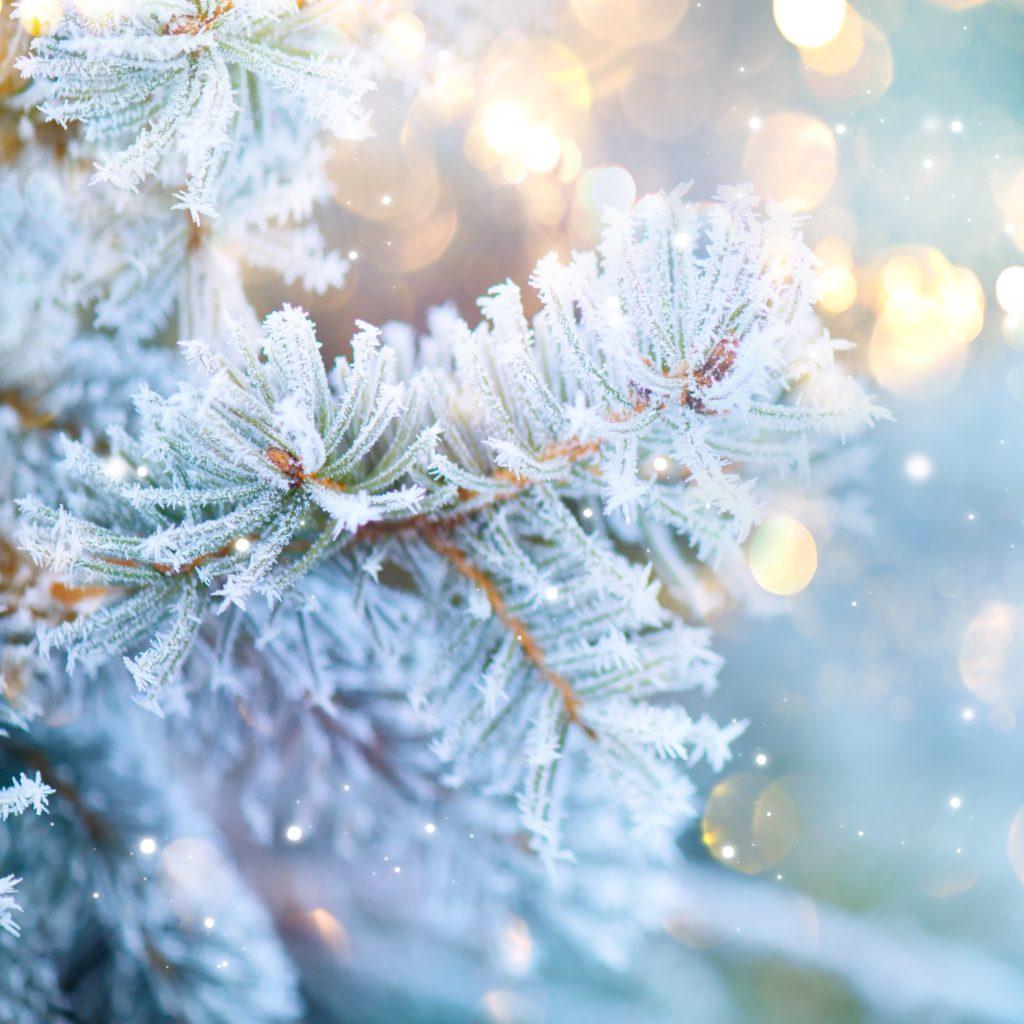 God Jul til alle fra oss i Vekstra