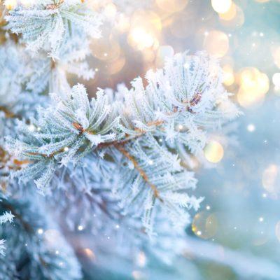 God jul fra alle oss i Vekstra
